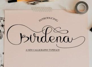 Birdena Font