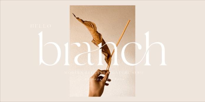 Hello Branch Font