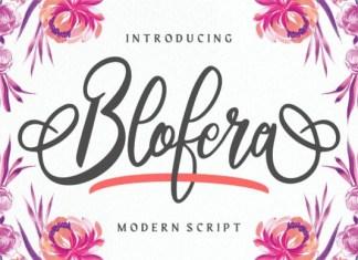 Blofera Font