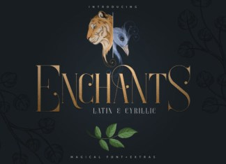 Enchants Font