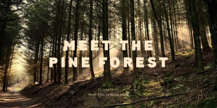 Pines Font