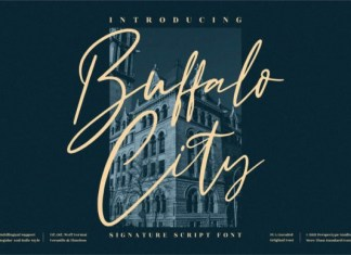 Buffalo City Font