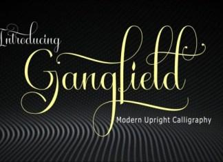 Gangfield Font