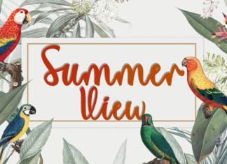 Summer View Font