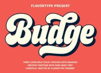 Budge Font