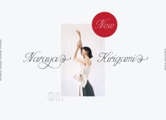 Naraya Kirigami Font