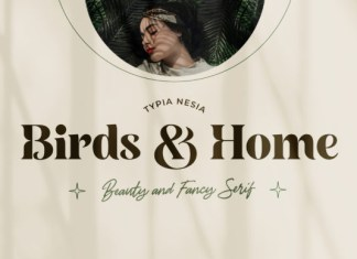 Birds and Home Font