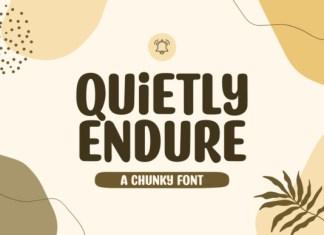 Quietly Endure Font