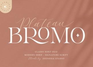Bromo Plateau Duo Font