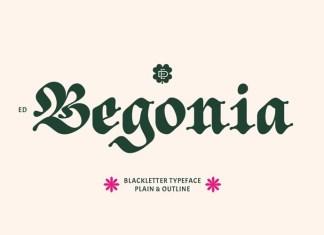 ED Begonia Font