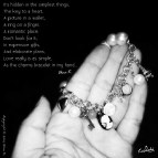 Love and the charm bracelet in my hand ...