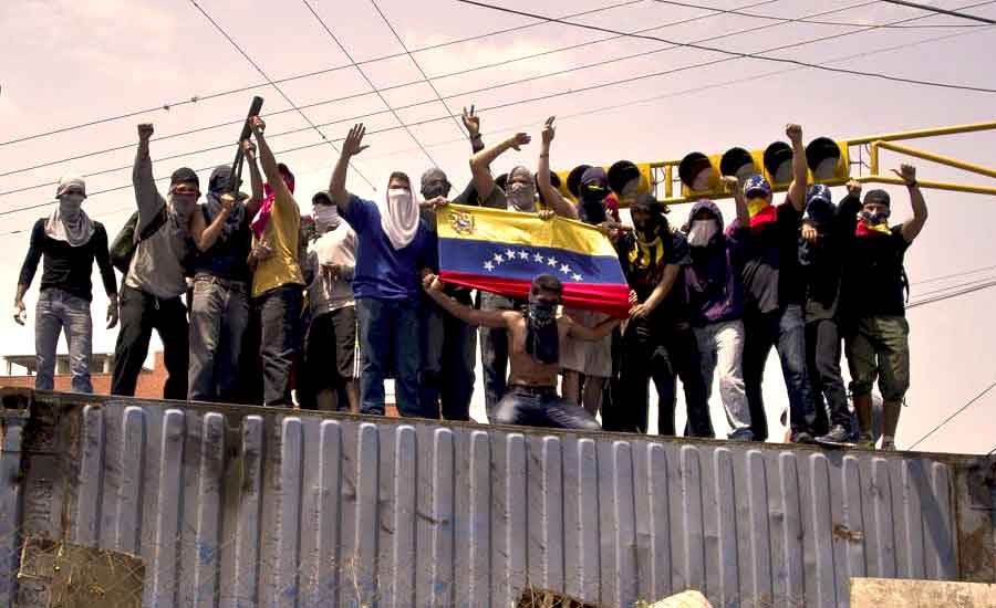 gochos venezuela if revista digital