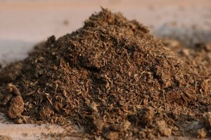 Read more about the article The Spill on Coco Peat