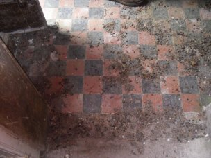 Tiled entrance hall at The Grange, Corragarry, Co. Monaghan (Source: Own Photograph, 2011)