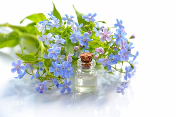 essential-oils-for-beginners-in-aromatherapy