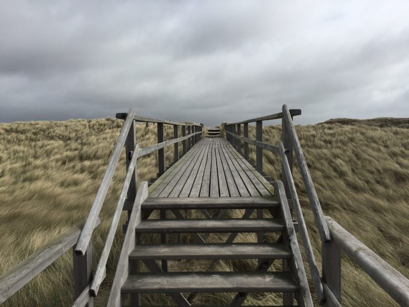 wooden-walkway-in-sylt