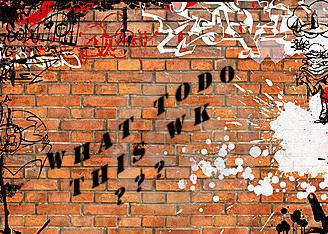Mur de briques (5)