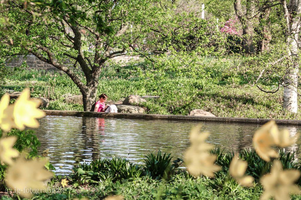 Fotografieren in Hamburg: Fototipp Planten und Bloomen
