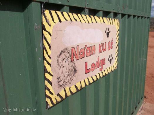 Wildlife-Volunteering-Namibia