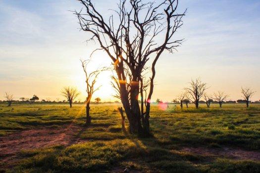 sonnenaufgang-fotografieren-tipps