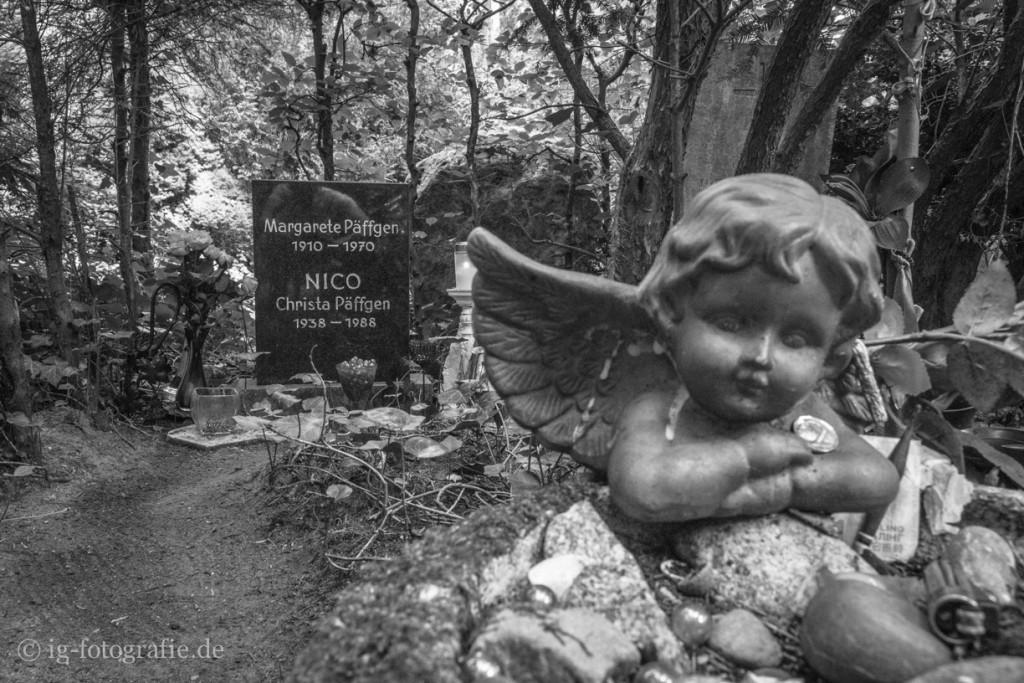 Friedhof-Grunewald-Forst-6