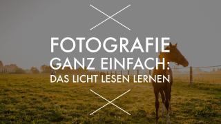 Fotografieren lernen ganz einfach: Die Wirkung von Licht verstehen