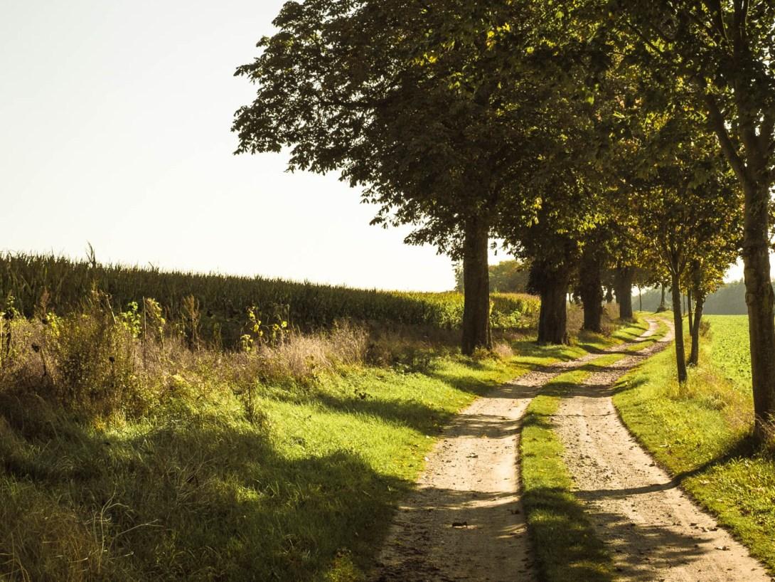 landschaftsfotografie-tipps-4