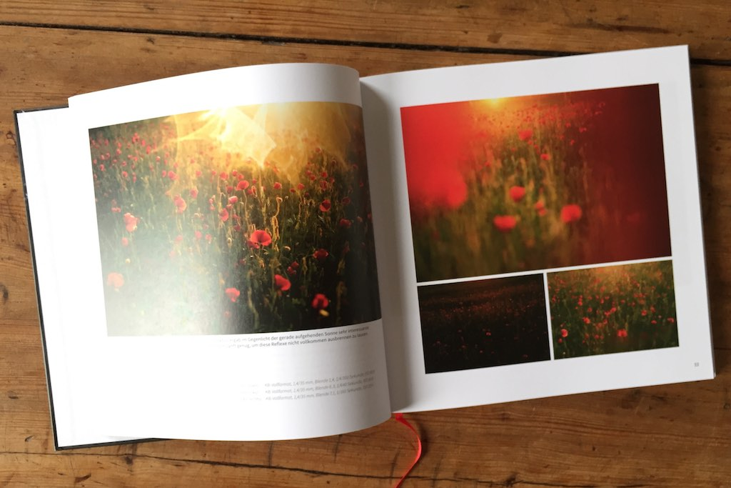 Buch-Blumen-fotografieren