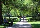 Der Humboldtpark
