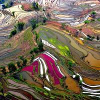 Os Lugares Inacreditavelmente Coloridos do Planeta #Colorful and Gorgeous Places on Earth