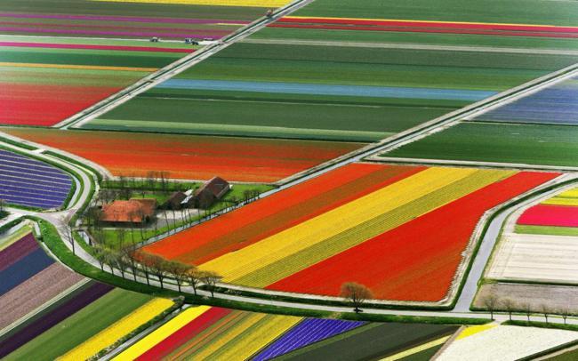 paisagens_coloridas_12