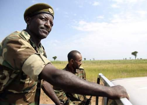 Guards on duty at Saudi Star's farm