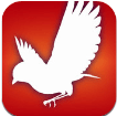AudubonBird