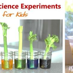 Kitchen Science Remodeled Kitchens Images 6 Experiments For Kids