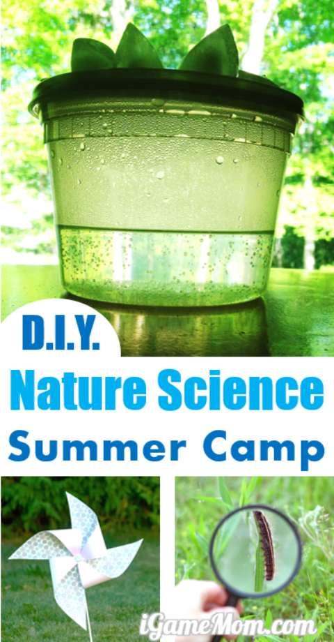 DIY Nature Science Summer Camp at Home