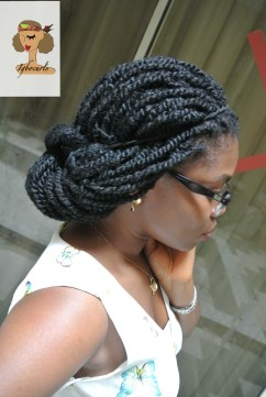 dsc_7457-1 Protective Hairstyles
