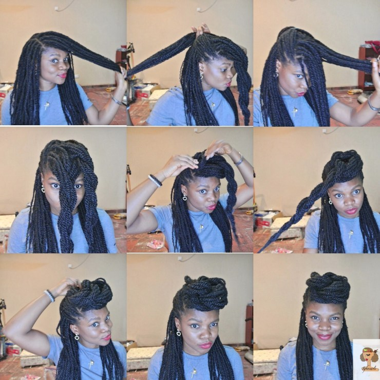 img_6557 4 Stylish ways to wear your Braids or Twists (Protective Style)