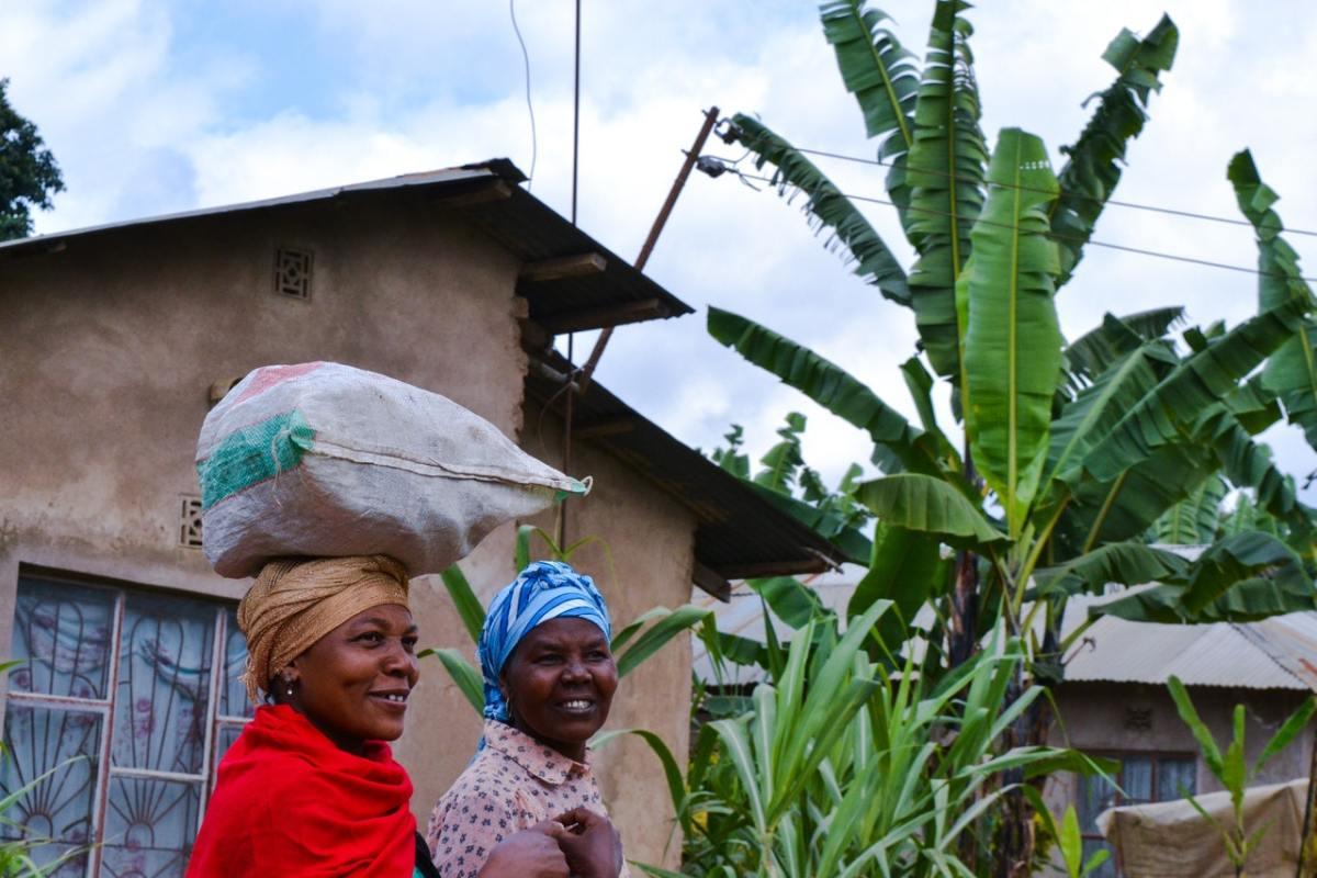 Coronavirus Cure: Equatorial Guinea's Deputy Health Minister Arrives Madagascar To Take Home Packs Of Covid Organics