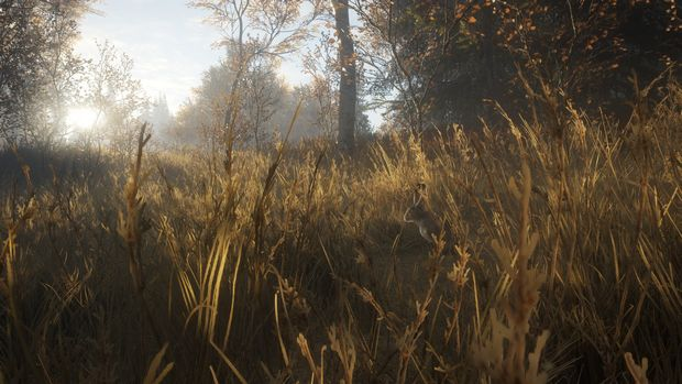 theHunter: Call of the Wild - New Species 2018 Torrent Download