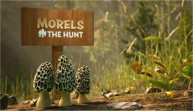 Morels: The Hunt Free Download