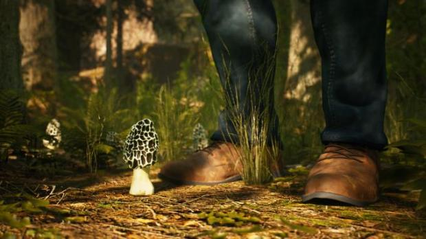 Morels: The Hunt Torrent Download