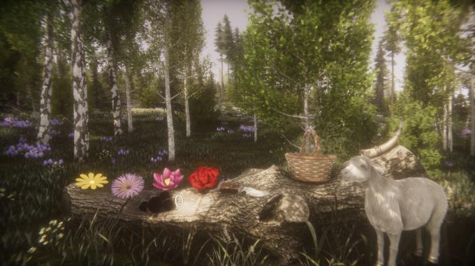 Flower Challenge Torrent İndirme