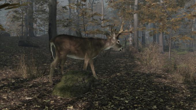 Pro Deer Hunting 2 Torrent Download
