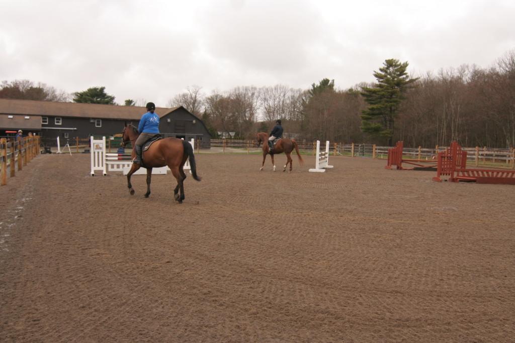 Horse Arena 019