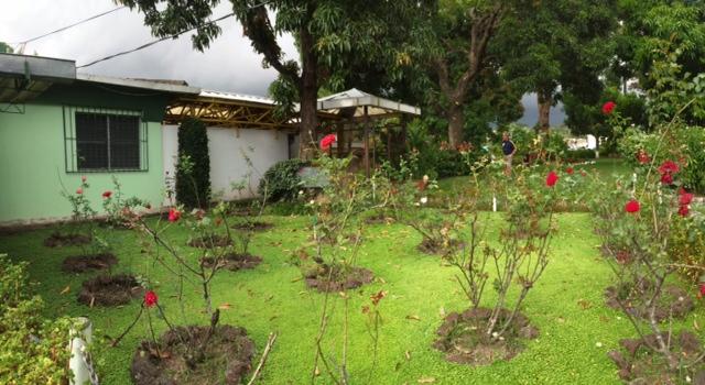 Rose Garden at the UCA