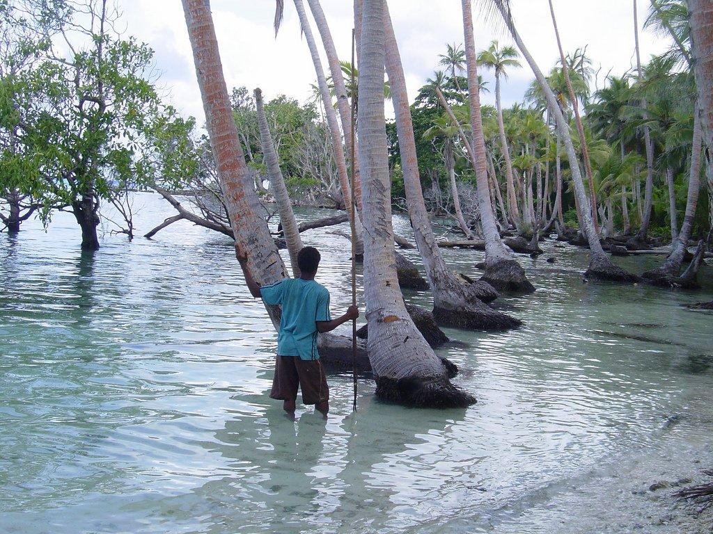 tegua-climate-change
