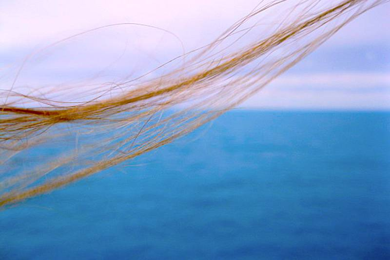 Looking at the ocean. Source: Magdalena Randal.