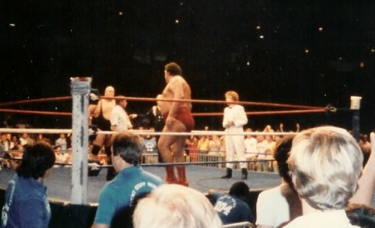 Geina and Andre in the ring