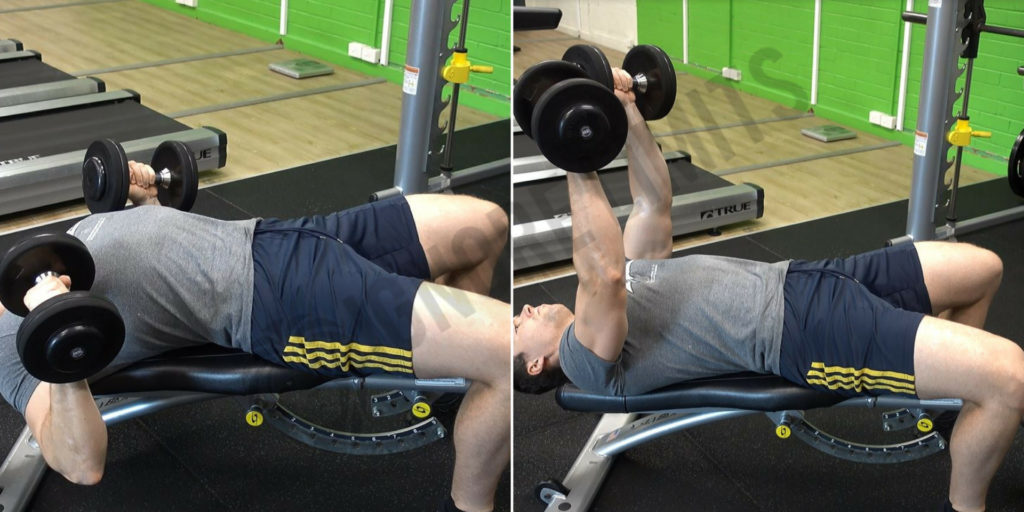 How To Decline Dumbbell Bench Press Ignore Limits
