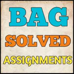 BAG Solved Assignment (2020-21)